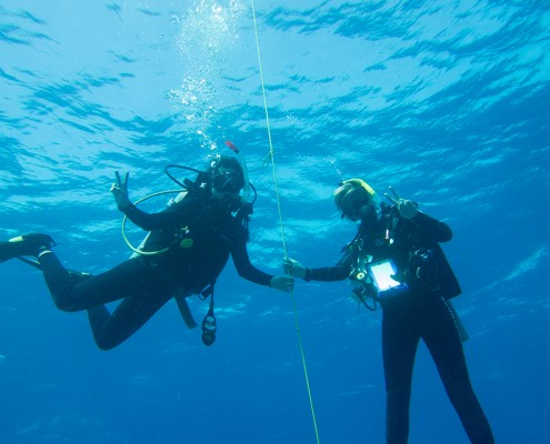 Diving sports yacht charter