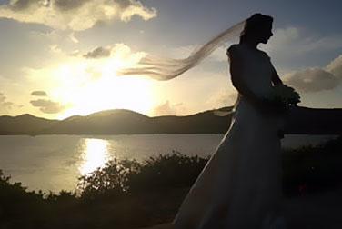Honeymoons in Paradise