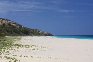 Todas las Tortugas Culebra Spanish Virgin Islands