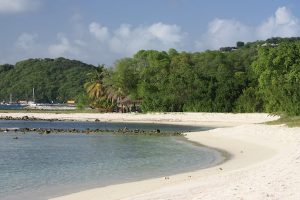 Mustique The Grenadines